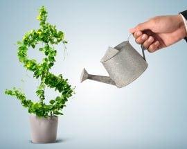 Consultoria em Projetos de Investimento